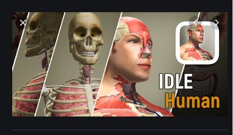 Idle human Apk Mod Free on Android Game Download