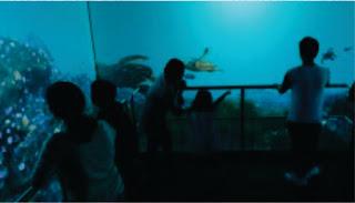 Sensasi Kapal Selam Menjelajah Laut di Jakarta Aquarium