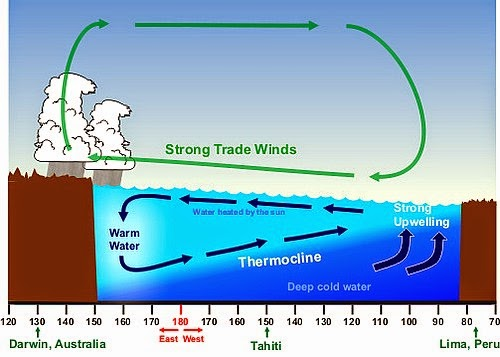 La Nina trade winds