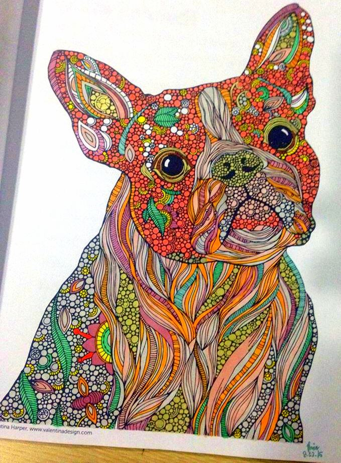 Kolorista Creative Coloring Animals Dogs
