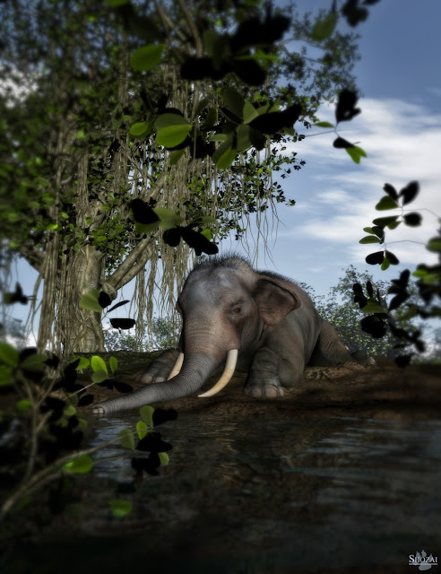Indian Elephant for Poser by AM