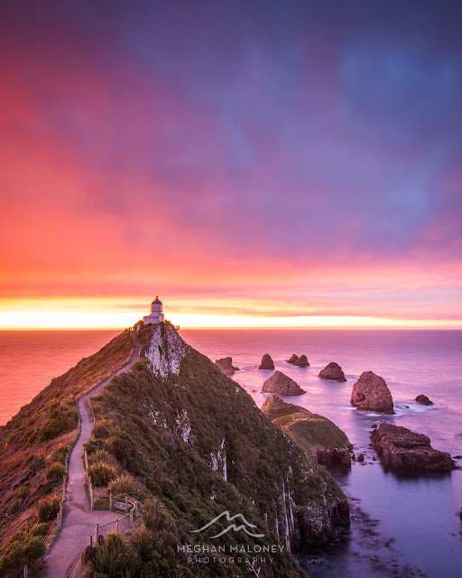 Nugget Point Fiery Sunrise