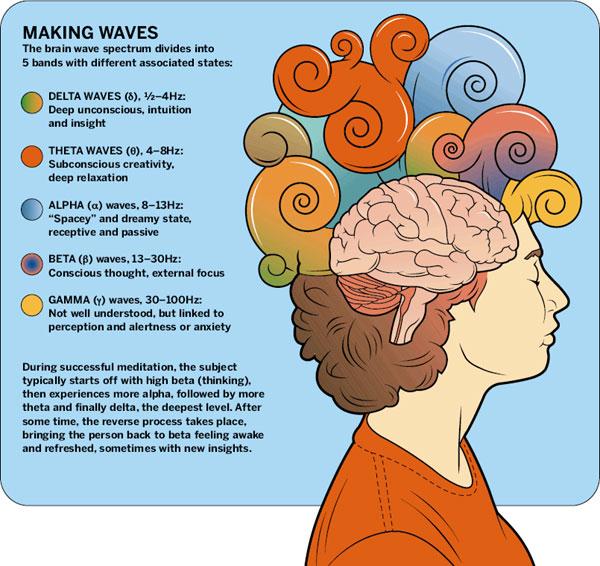 Dig YOGA: Your Brain Waves On Meditation