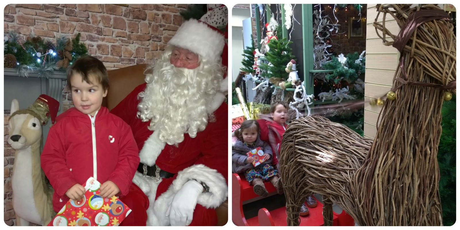 Santa at Bodnant Garden Centre Father Christmas