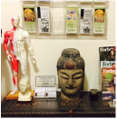 Tree of Life Acupuncture NYC waiting room