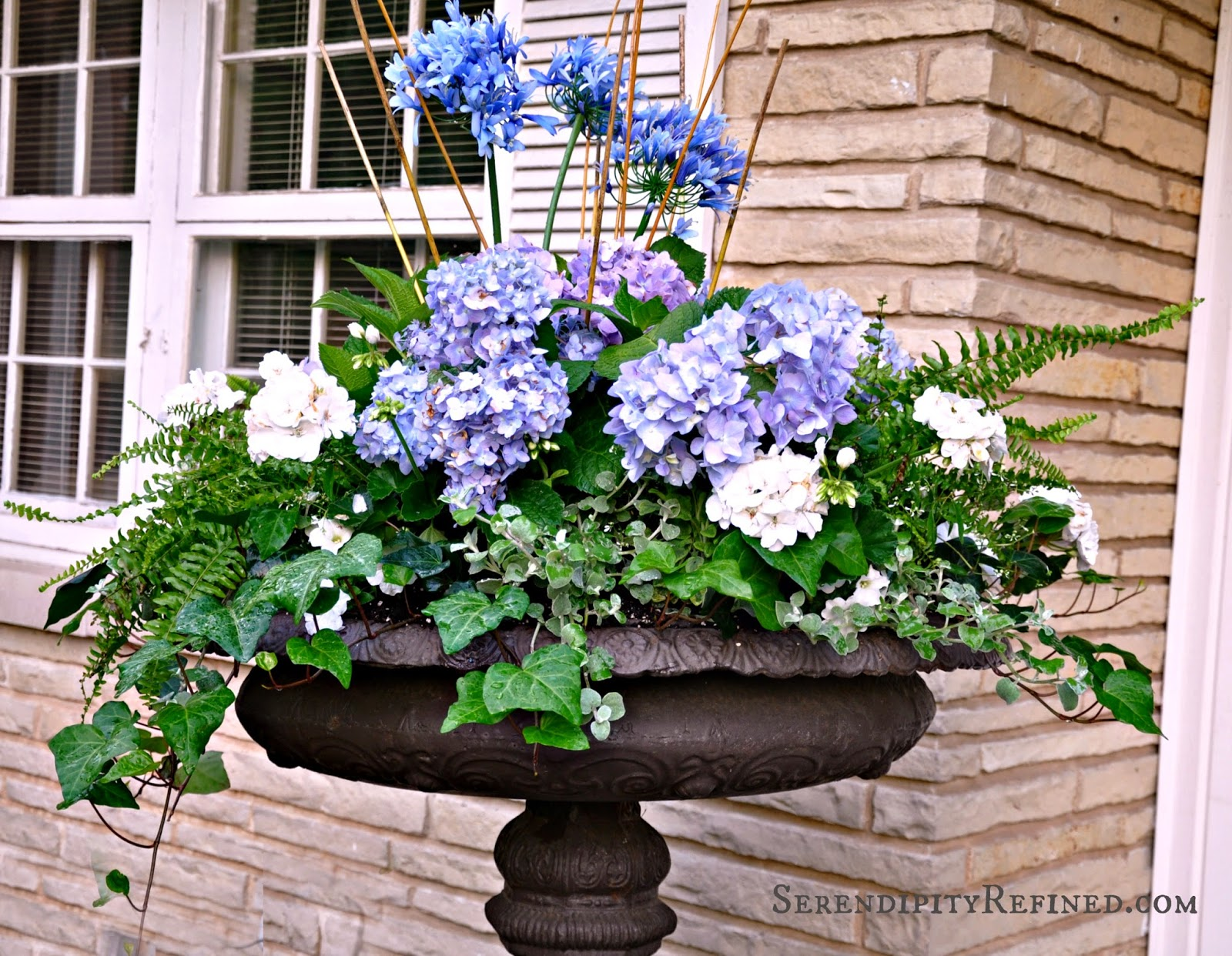 Serendipity Refined Blog: Blue And White Outdoor Summer