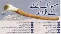 benefits of miswak, how to use miswak, miswak karne ka sunnat tarika, miswak karne ka tarika, miswak ke faide, miswak ki fazilat, muhammad, quran aur hadees, sunnah, sunnat, miswak ke fawaid in urdu,