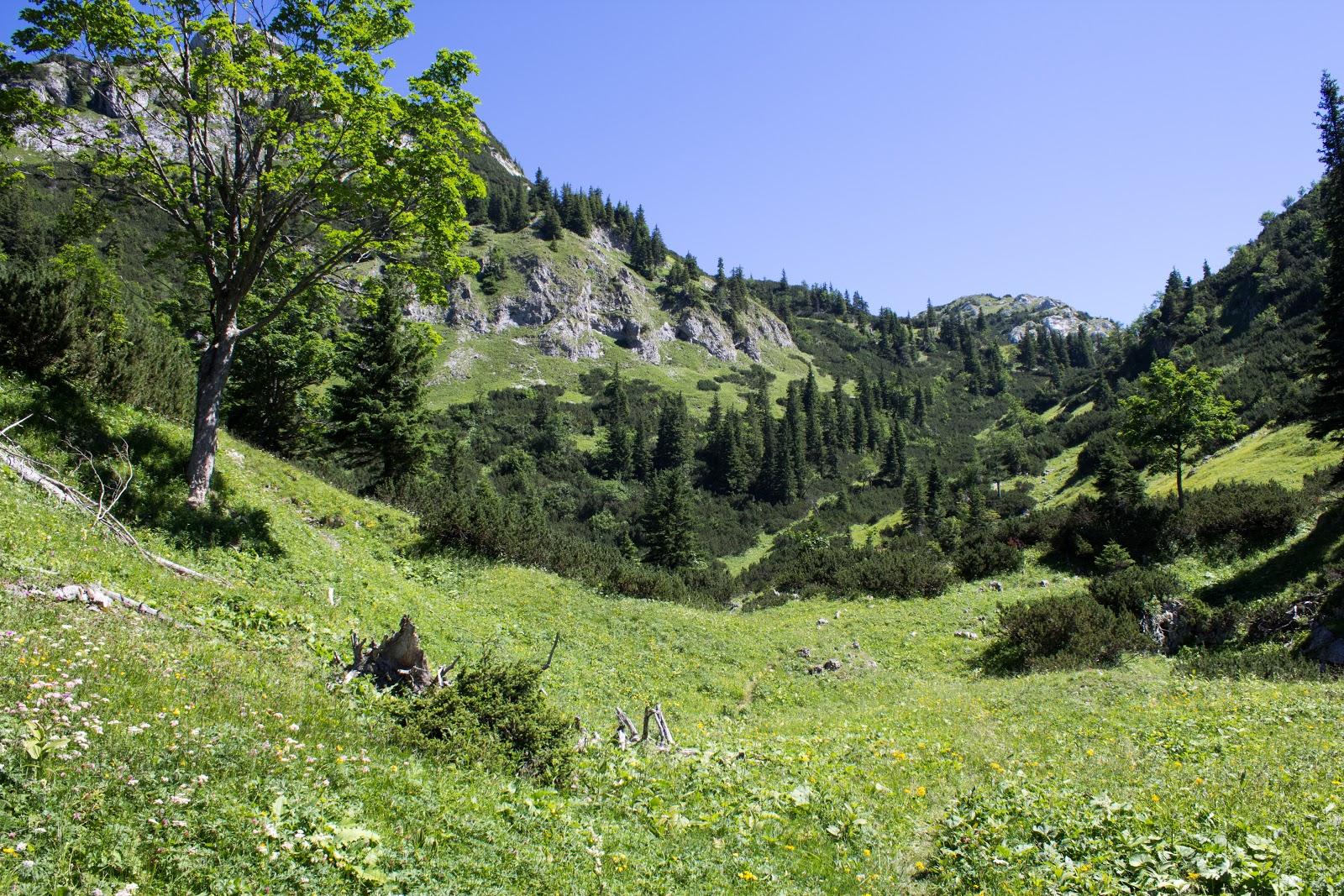 Zweitägige Wanderung von der Gsollkehre in Eisenerz über die Gsollalm zum Brandstein und weiter über Fobisalm und Hinterseeau zum Leopoldsteinersee - Bärenloch