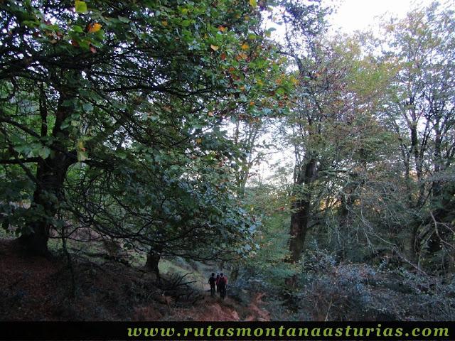 Ruta Pienzu por Mirador Fito y Biescona: Entrando en la Biescona