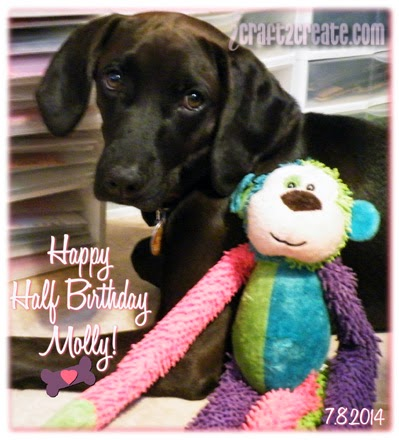 Molly, puppy, dog, monkey, chew toy, half birthday, July, Lettering Delights, digital, photoshop