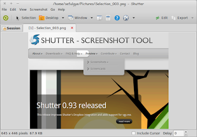Shutter Aplikasi Screenshot Printscreen Capture Linux