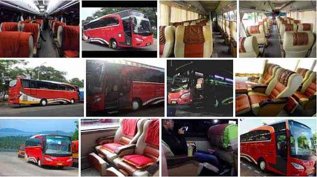 Damri Royal Class, Fasilitas dan Harga Tiket Ramah Perjalanan