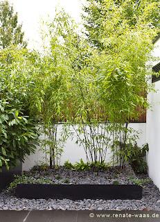Gartenplanung, Gartengestaltung, Bambus, Gartenplaner, Gartendesign, Hausgarten, München