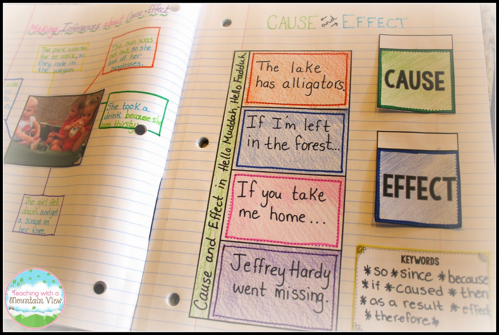 Tips for Writing a Cause and Effect Essay: The Basics from Start to Finish