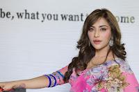 Angela Krislinzki Rogue Movie Fame Telugu Actress in Saree Backless Choli 027.JPG