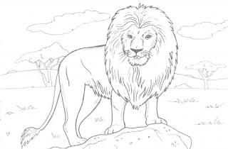 Desenhos Para Colorir Animais Ferozes