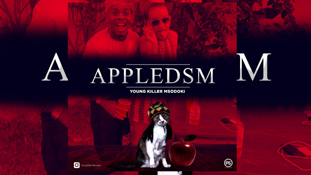 https://fanburst.com/kichwahits/young-killer-msodoki-apple-dsm-kichwahitscom/download