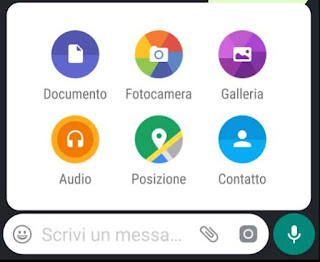 invio file whatsapp