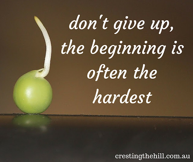 don't give up, the beginning is often the hardest