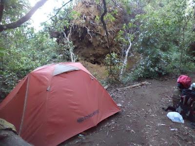 gunung argopuro jalur bermi