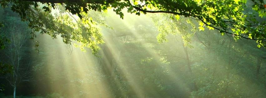 Zen relaxation backgrounds zen peace facebook cover pics - Nature cover pages for facebook ...