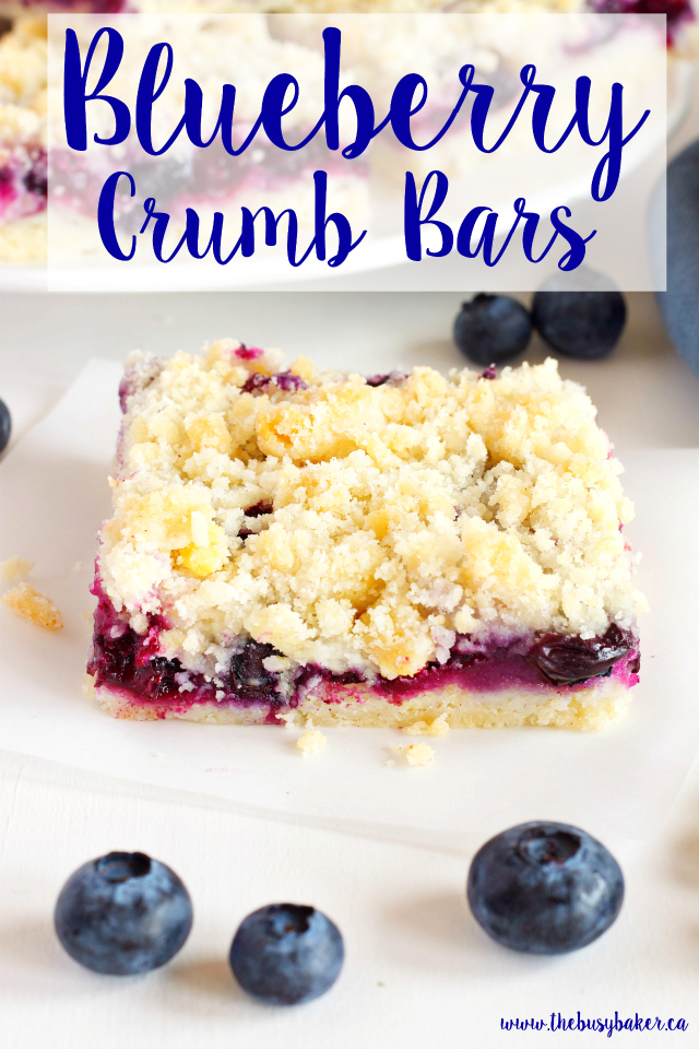 These Best Ever Blueberry Crumb Bars are the perfect sweet snack! Recipe from www.thebusybaker.ca!