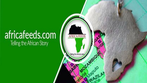 Africa Feeds Media, Latest News Portal Telling Africa's Story officially launches