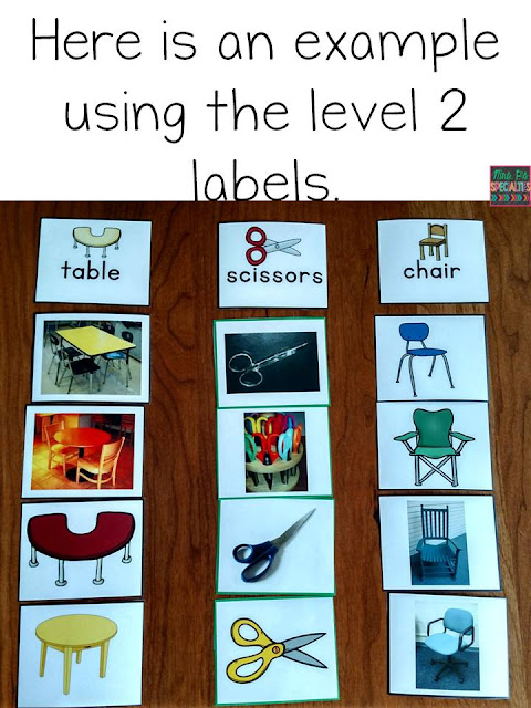 photo example of level 2 labels with text and picture