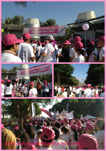 The Pink Walkathon 2012