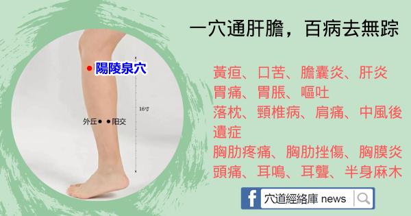 灸透1穴通肝膽,5大疾病全解決!這個穴位真的好重要(陽陵泉)