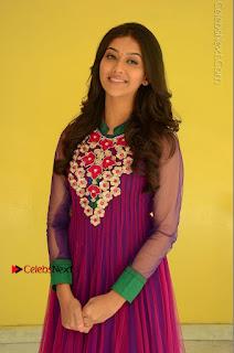 Actress Pooja Jhaveri Latest Stills in Purple Salwar Kameezt at Dwaraka Success Meet  0107.JPG