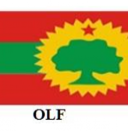 Voice of the Voiceless: With Emphasis on Oromo in Horn of