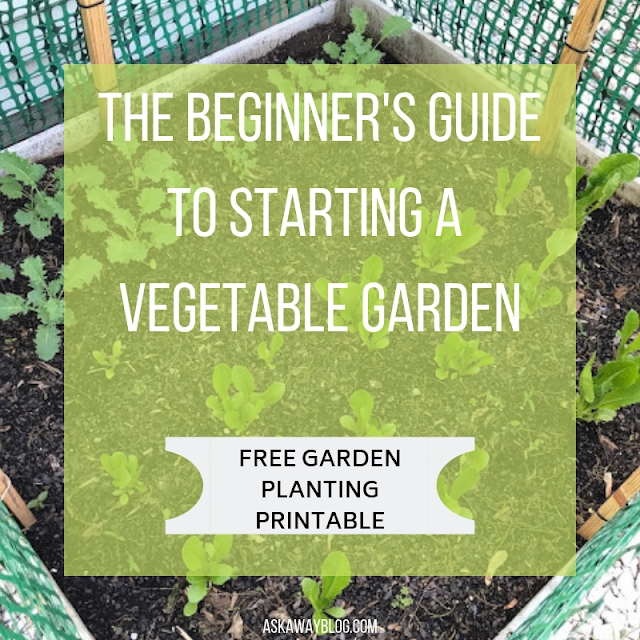 The Beginner's Guide To Starting A Vegetable Garden [FREE Garden Planning Printables]
