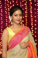 Anu Emanuel Looks Super Cute in Saree ~  Exclusive Pics 051.JPG
