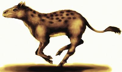 EOHIPPUS nasıl bir hayvandır?