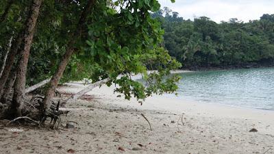 beach, Costa Rica