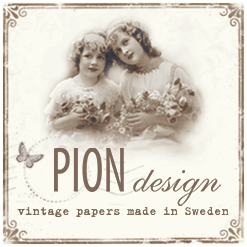 Pion Design Team Member