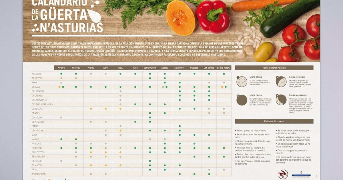 La Huertina De Toni Calendario De Siembra.Plantar Cebolleta En Asturias