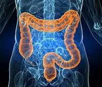 Listeriosis gastroenterology Treatment