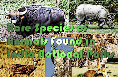 CBSE Class 8/9 - Science - Rare Species of Animals Found in National Parks (#cbsenotes)(#eduvictors)