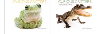 curious critters vol 1 and 2 covers