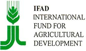 IFAD says Post Offices @forefront of remittance, financial services in rural Africa