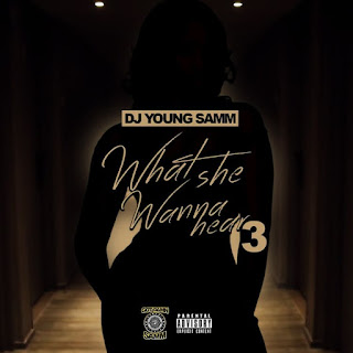 Dj Young Samm - What She Wanna Hear 3