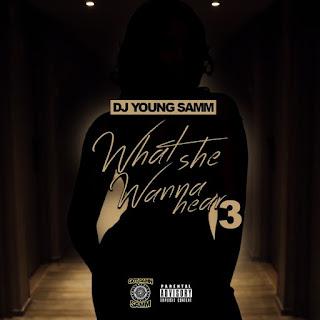 Dj Young Samm - What She Wanna Hear 3
