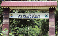 Taman Nasional Gunung Leuser | wonderful Indonesia