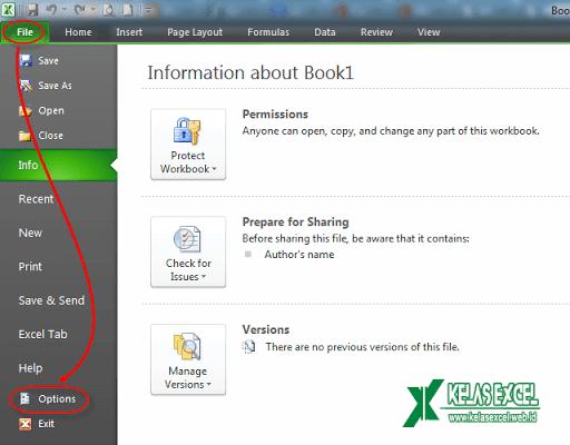 Cara Mengaktifkan Tab Developer pada Microsoft Excel