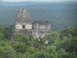 Temple of The Jaguar Priest and Temple of The Masks in Central Plaza tfrom Temple IV, Tikal