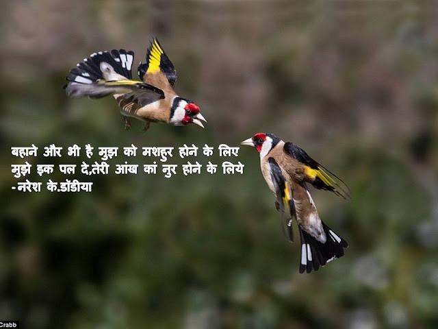 बहाने और भी है मुझ को मशहुर होने के लिए Hindi Sher By Naresh K. Dodia
