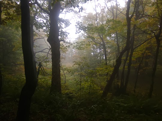 Szlak na Wołosań.