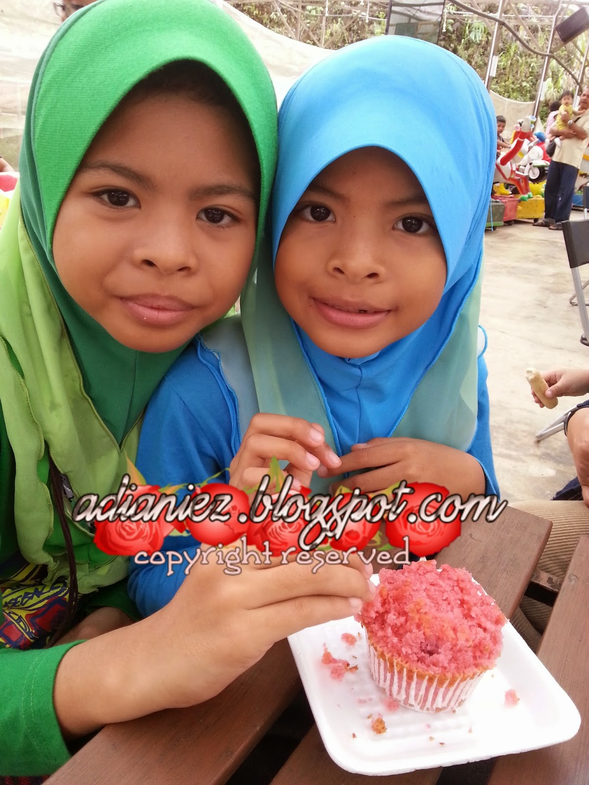 CACTUS VALLEY & BIG RED STRAWBERRY FARM ~ MARI KITA GI PETIK STRAWBERRY ANAK-ANAK IBU